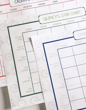 Things to help kids stay organized and on task | ohlovelyday.com #ad