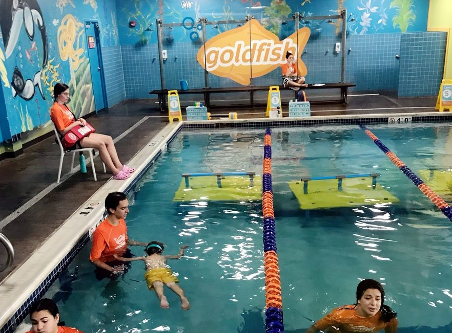 goldfish swim school lessons progress update