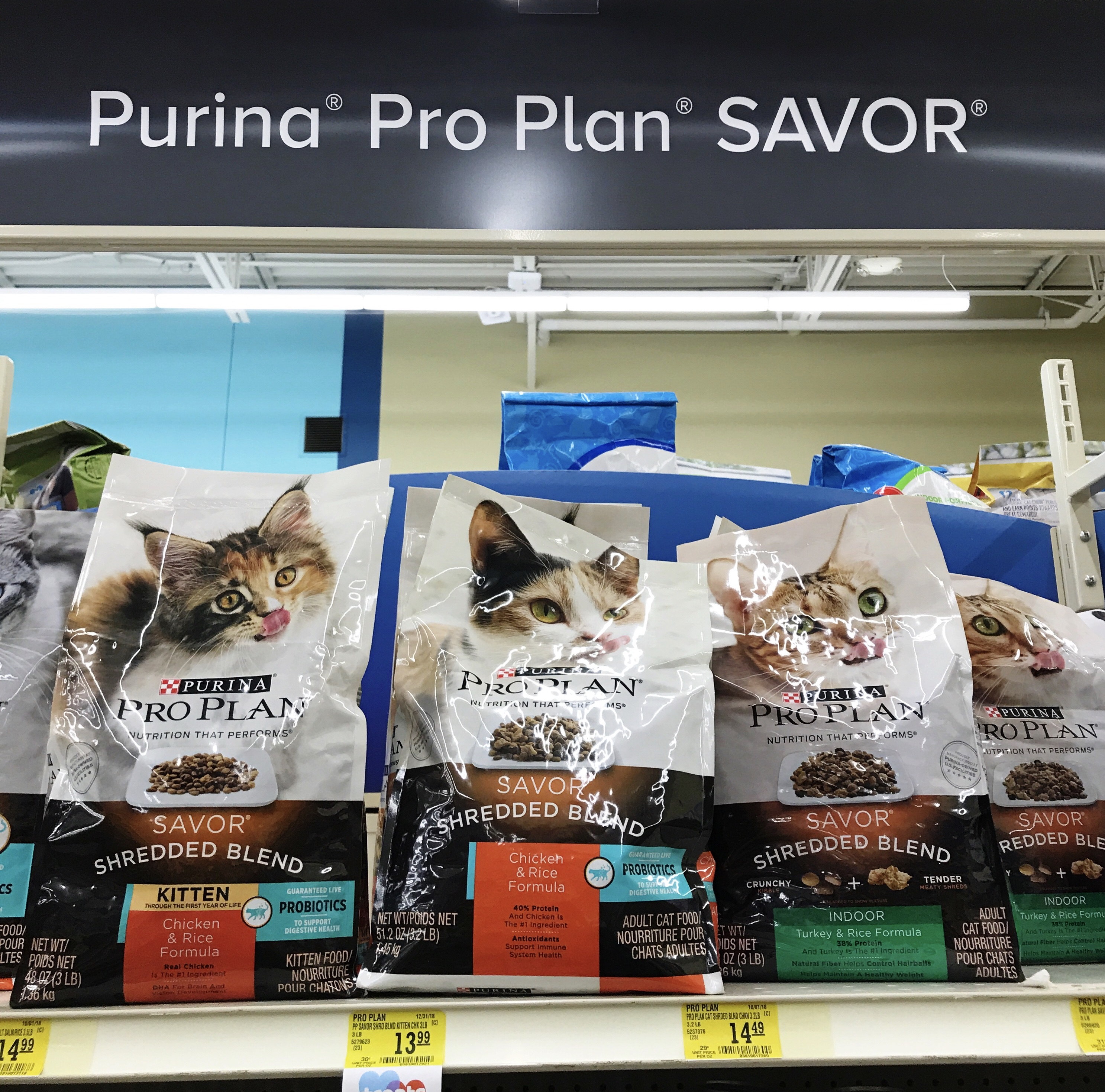 Feeding Your Cats For Optimal Health with Purina Pro Plan Probiotics | ohlovelyday.com