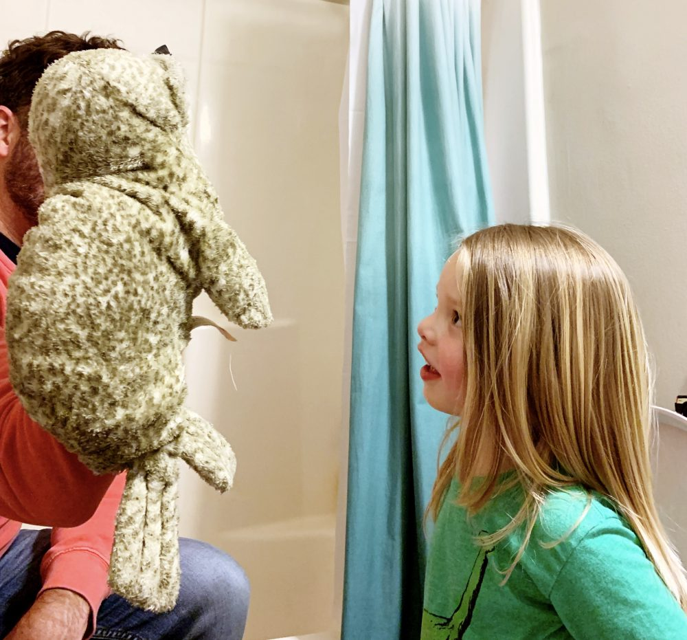 Tips and product recs for potty training.